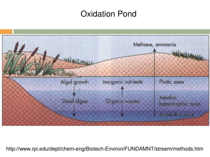 Oxidation Pond
