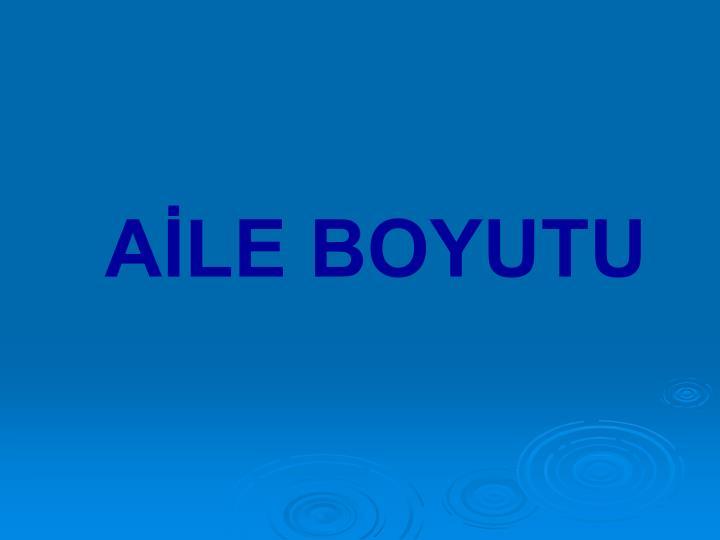 AİLE BOYUTU