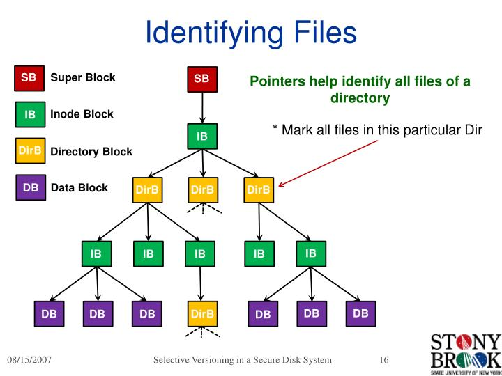 Identifying Files