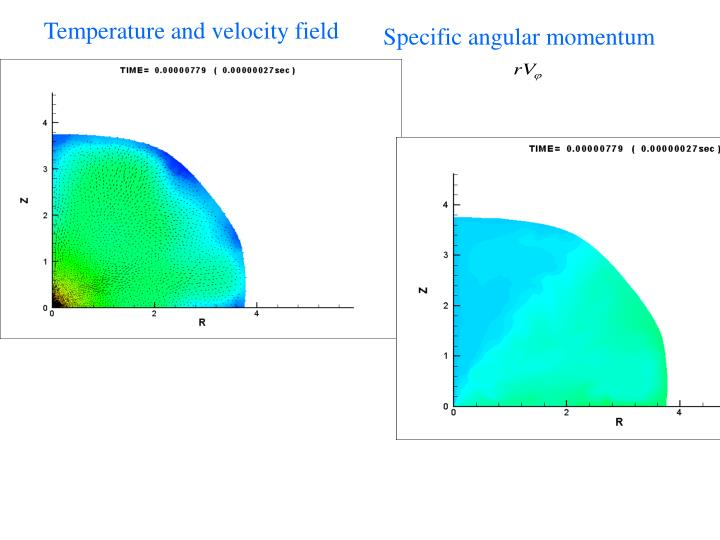 Temperature and velocity field