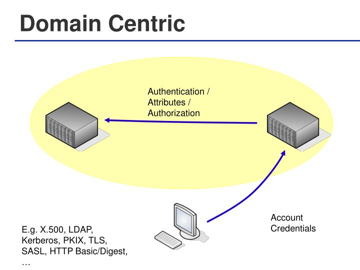 Domain Centric