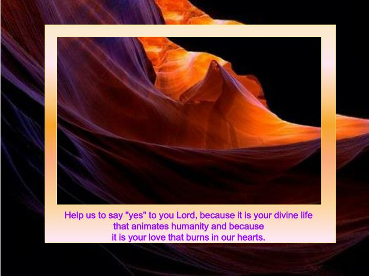 "Help us to say ""yes"" to you Lord, because it is your divine life"