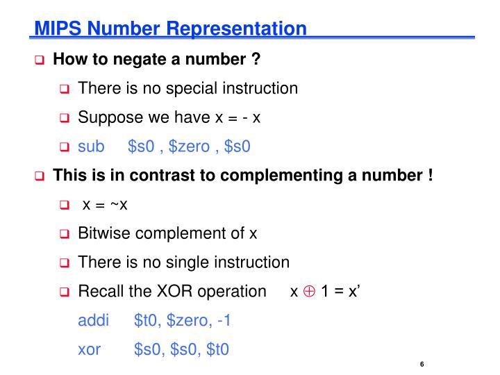 MIPS Number Representation