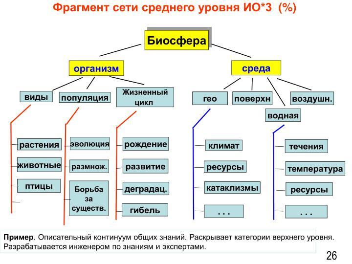 Фрагмент сети среднего уровня ИО*3