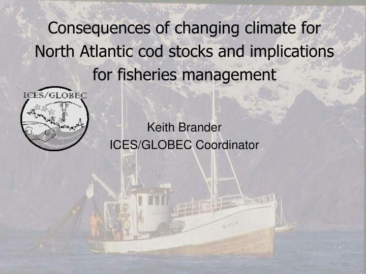 Consequences of changing climate for North Atlantic cod stocks and implications for fisheries manage...
