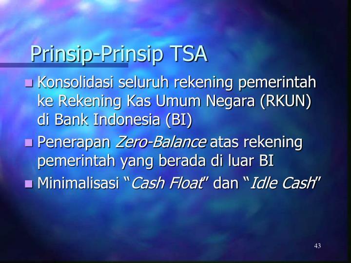 Prinsip-Prinsip TSA