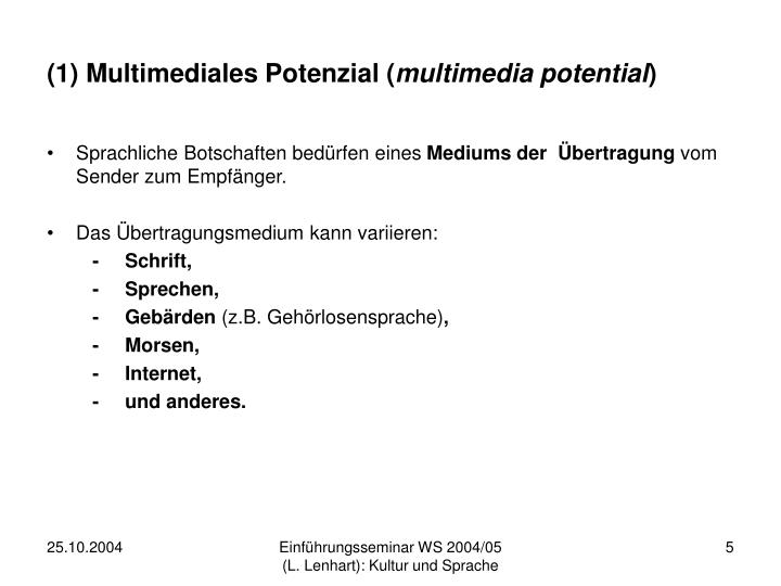 (1) Multimediales Potenzial (