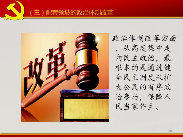 (三)配套领域的政治体制改革