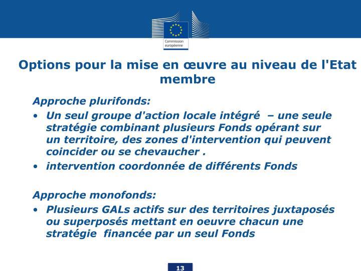 Options pour la mise en œuvre au niveau de l'Etat membre
