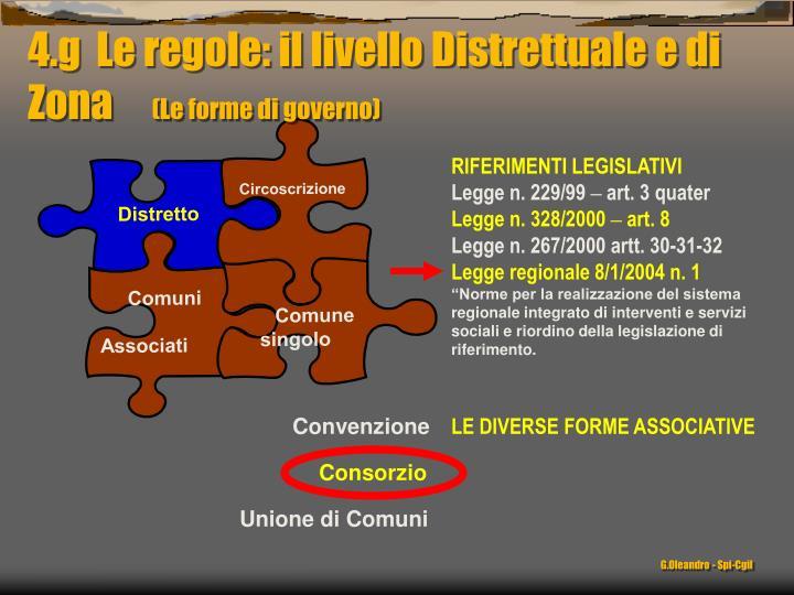 4.g  Le regole: il livello Distrettuale e di Zona