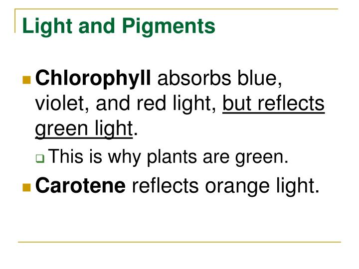 Light and Pigments