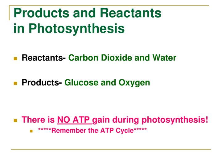 Products and Reactants