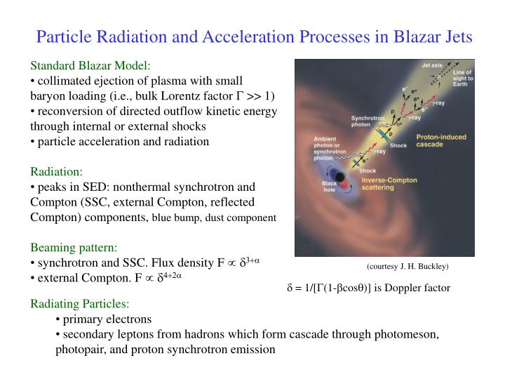 Particle Radiation and Acceleration Processes in Blazar Jets