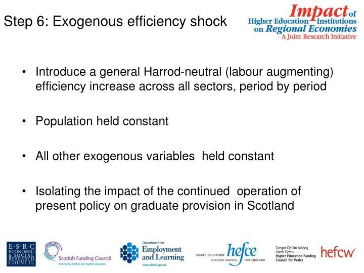 Step 6: Exogenous efficiency shock