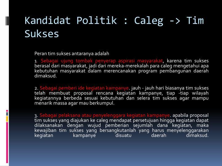 Kandidat Politik : Caleg -> Tim Sukses