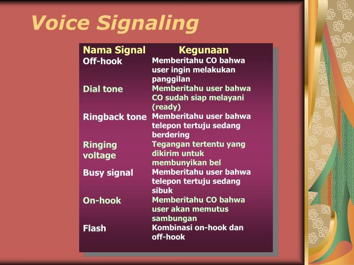 Voice Signaling