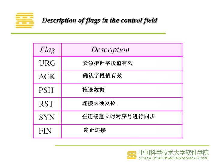 Description of flags in the control field