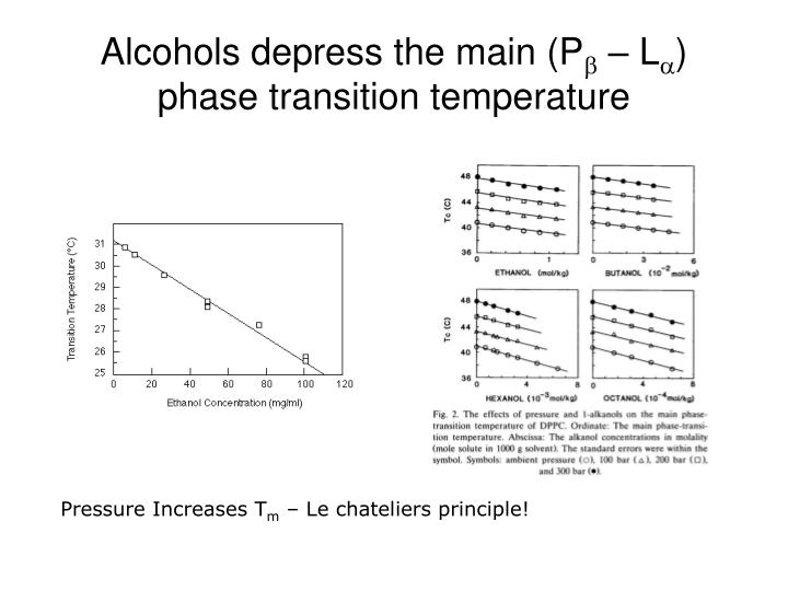Alcohols depress the main (P