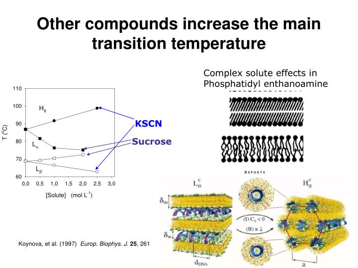 Other compounds increase the main transition temperature
