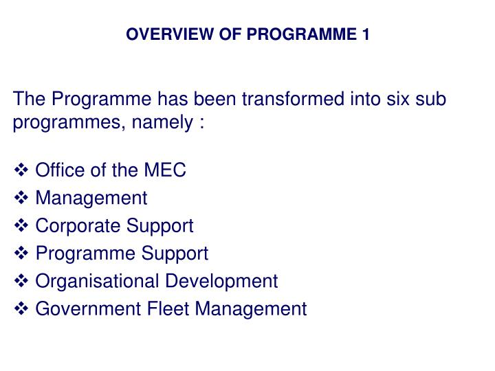 OVERVIEW OF PROGRAMME 1