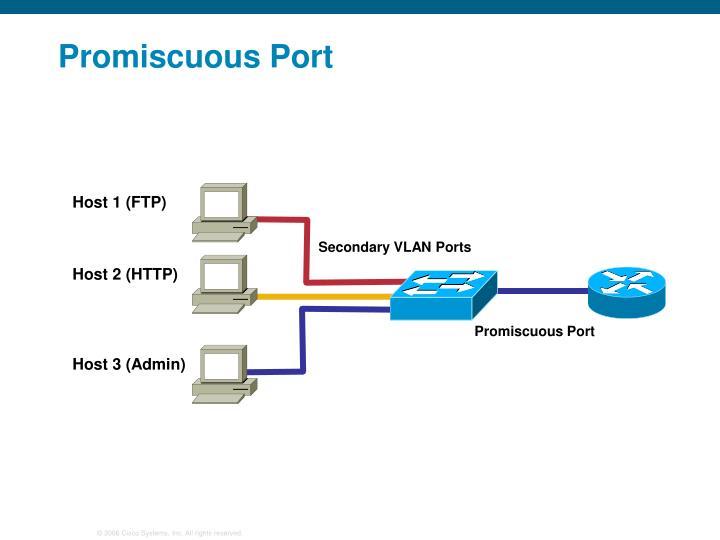 Host 1 (FTP)