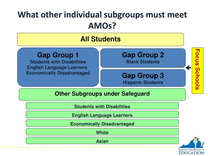 What other individual subgroups must meet AMOs?