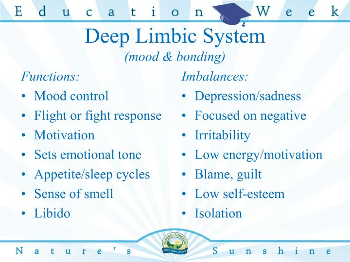 Deep Limbic System