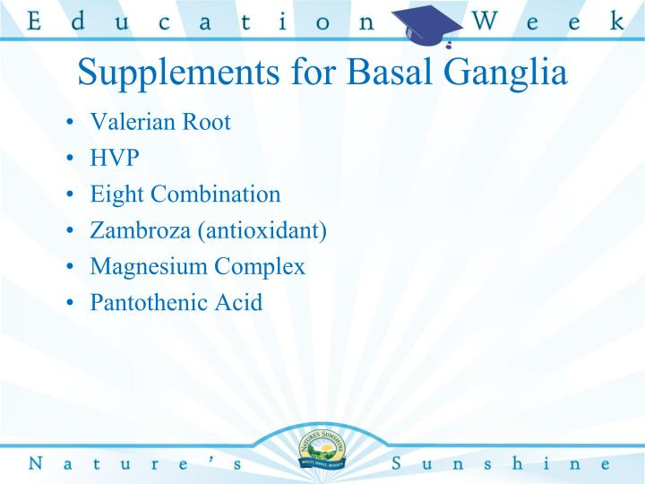 Supplements for Basal Ganglia