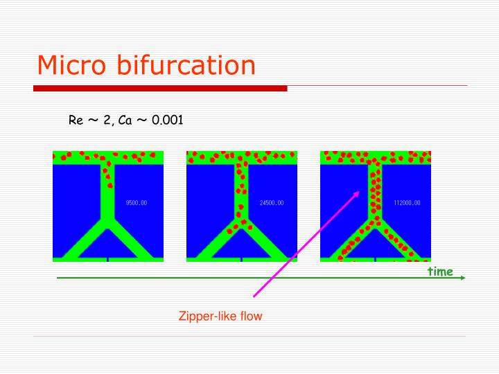 Micro bifurcation