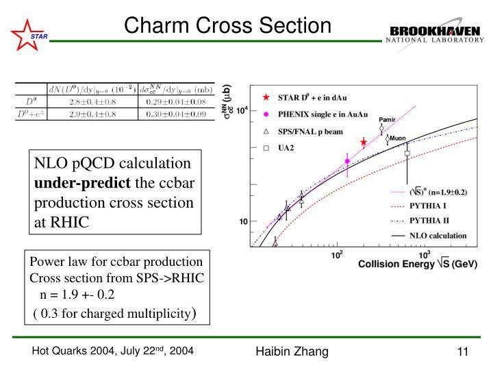 Charm Cross Section