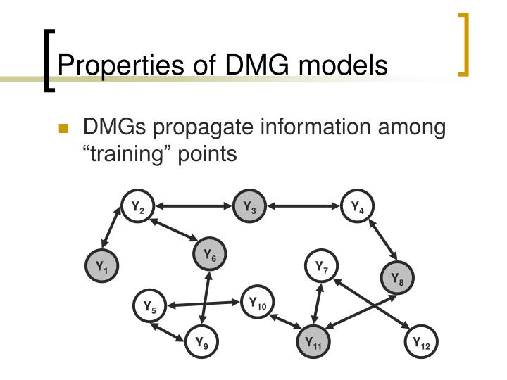 Properties of DMG models