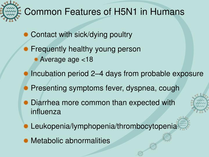 Common Features of H5N1 in Humans