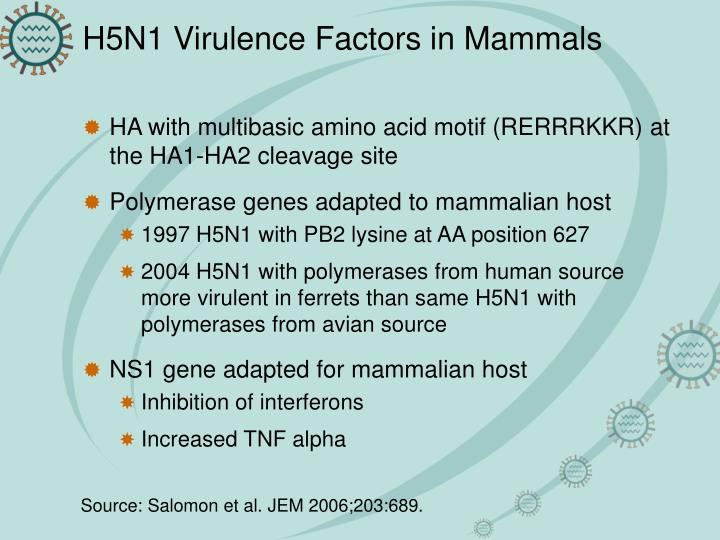 H5N1 Virulence Factors in Mammals