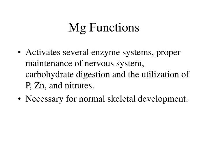 Mg Functions