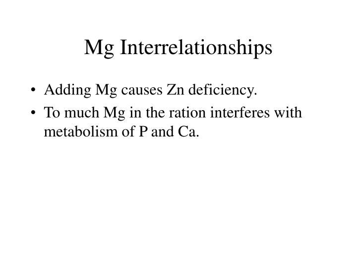 Mg Interrelationships
