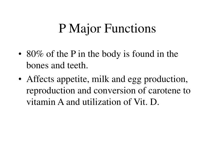 P Major Functions