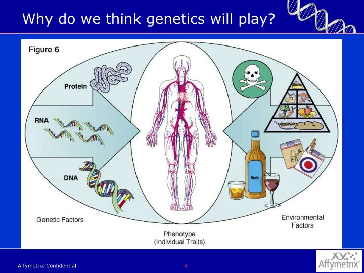 Why do we think genetics will play?