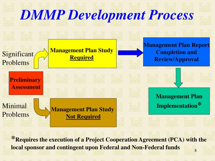 DMMP Development Process