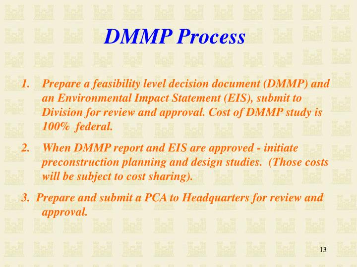 DMMP Process