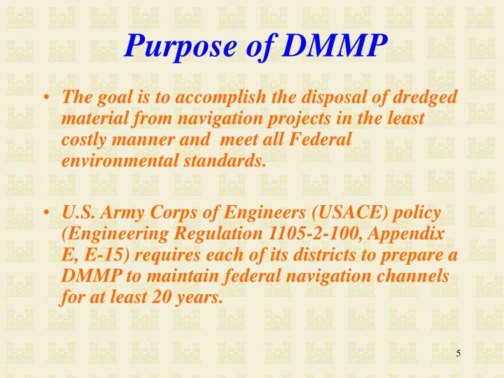 Purpose of DMMP