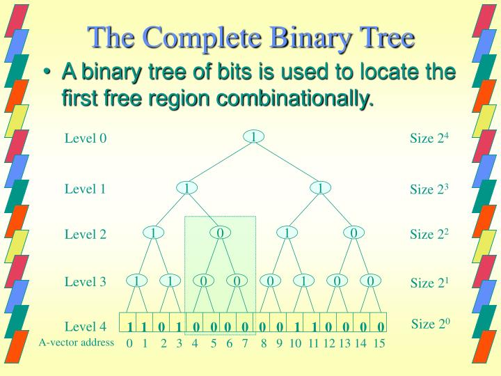 The Complete Binary Tree