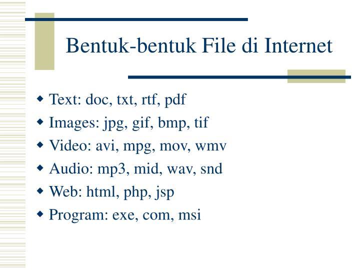 Bentuk-bentuk File di Internet