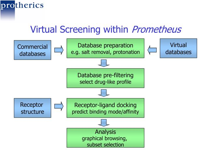 Virtual Screening within