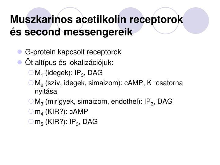 Muszkarinos acetilkolin receptorok és second messengereik