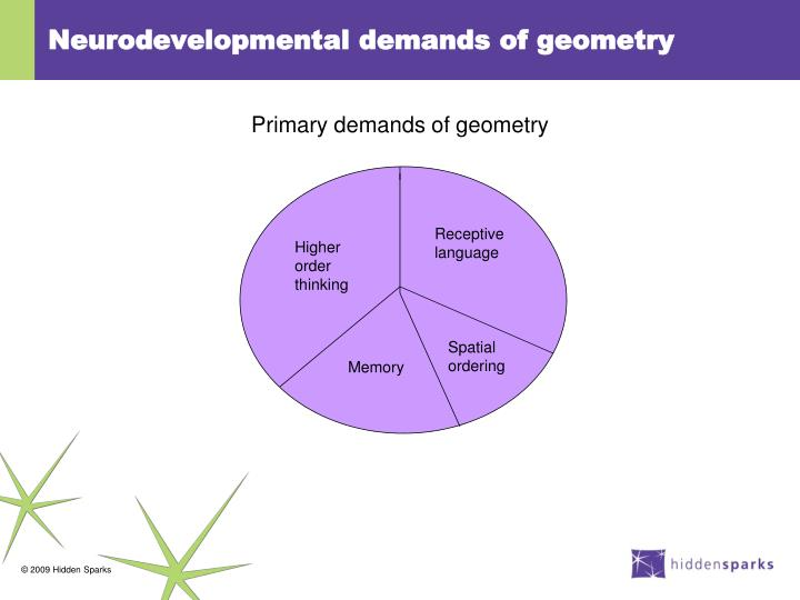 Neurodevelopmental demands of geometry
