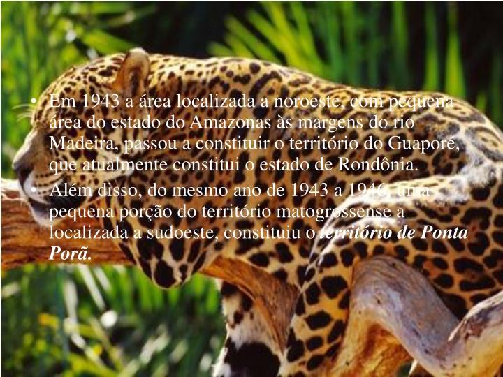 Em 1943 a área localizada a noroeste, com pequena área do estado do Amazonas às margens do rio Madeira, passou a constituir o território do Guaporé, que atualmente constitui o estado de Rondônia.