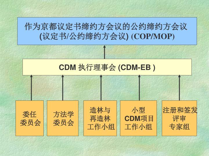 作为京都议定书缔约方会议的公约缔约方会议
