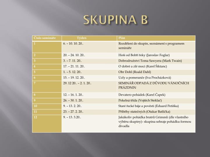 SKUPINA B