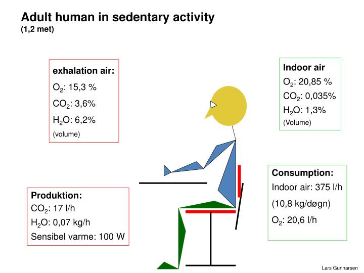 Adult human in sedentary activity