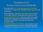 toxoplasmosis kontrol korunma kedilerde